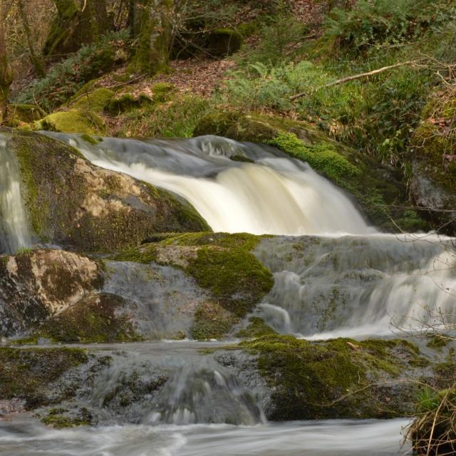 Cascade sur la randonnée du Bois des Boeufs