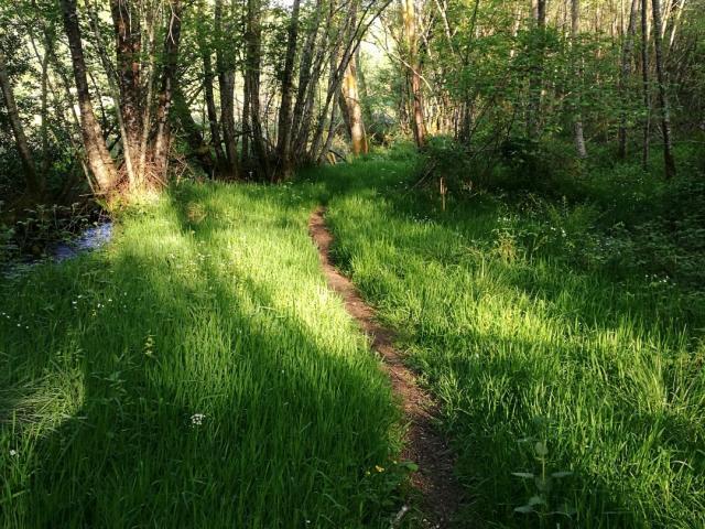 Chemins Le Bois Des Boeufs