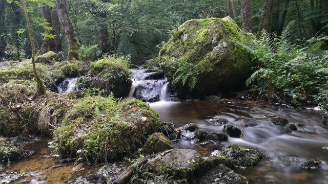 Blocs granitiques sur la rivière du Verger, dans les gorges du Verger à Bourganeuf