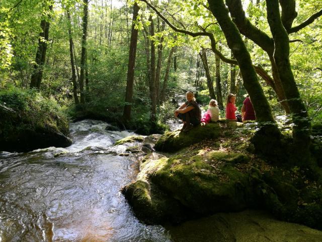 Randonnée Le Bois Des Boeufs