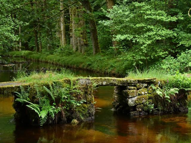 Site de la cascade des Jarrauds