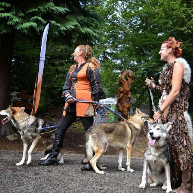 Les Loups De Foret Follies Chabrières©creuse Oxygène, La Creuse
