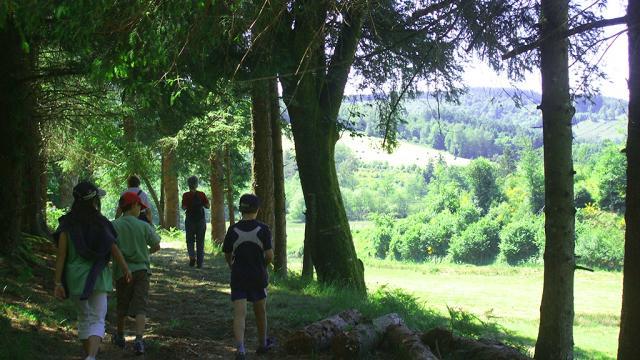 Sous Bois Et Petits Chemins Creusois , La Creuse