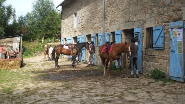 Cheval en Creuse