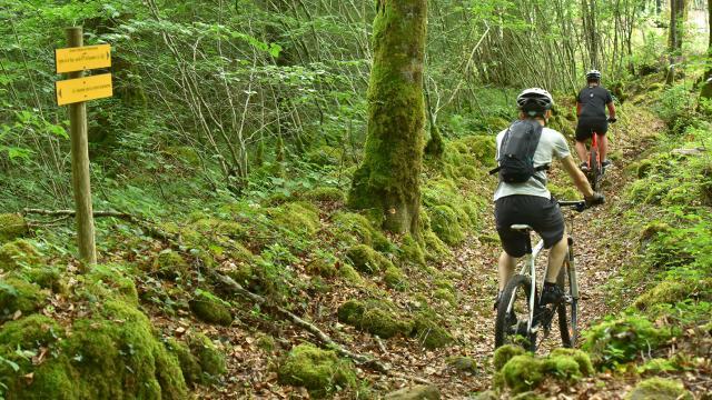 VTT forêt d'Epagne