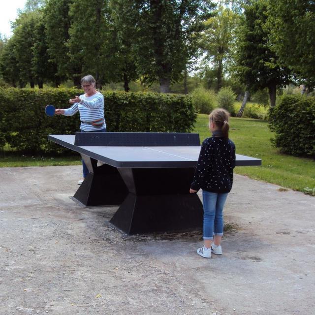 Ping Pong Gzn