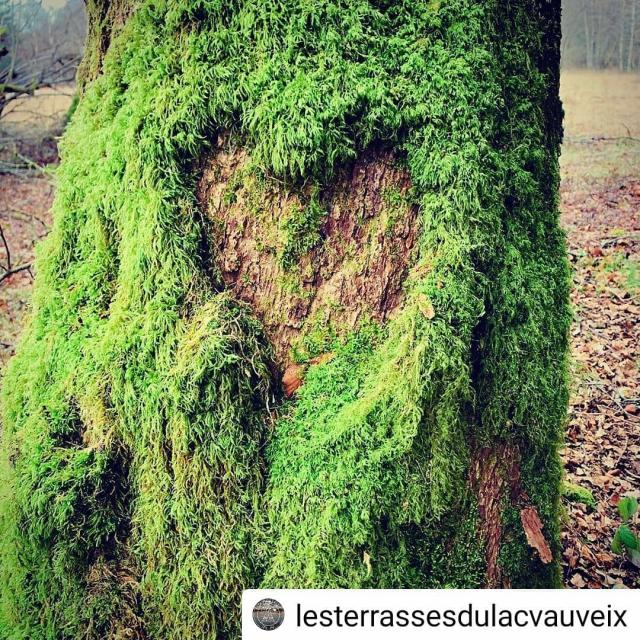 Instagram #ilovecreuse