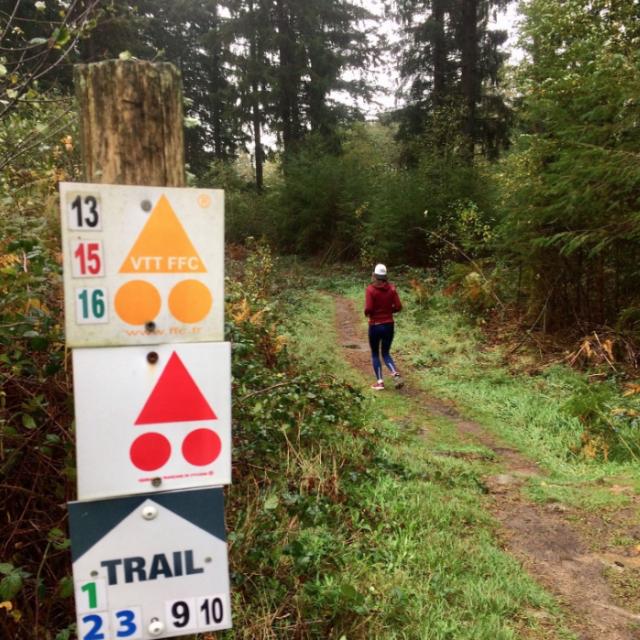 Balisage Trail